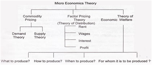The subject matter or scope of micro economics.